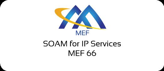 MEF 66 - SOAM for IP Services