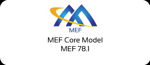 MEF 78.1 - MEF Core Model