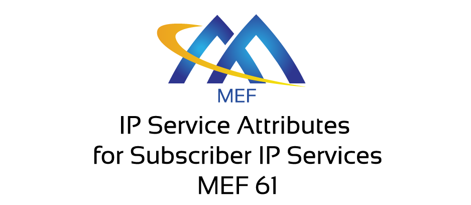 IP Service Attributes for Subscriber IP Services